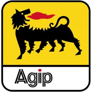 AGIP Scholarship Past Questions